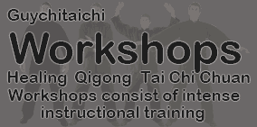 guychitaichi workshops