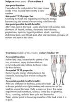back acupressure points